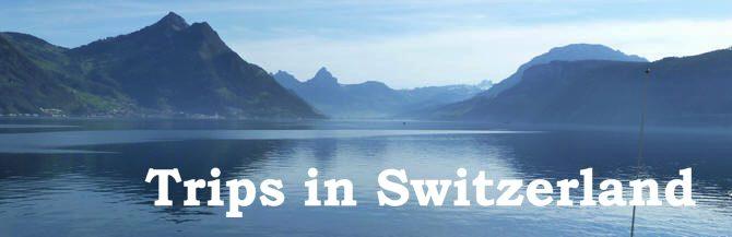 Swisstripsbanner